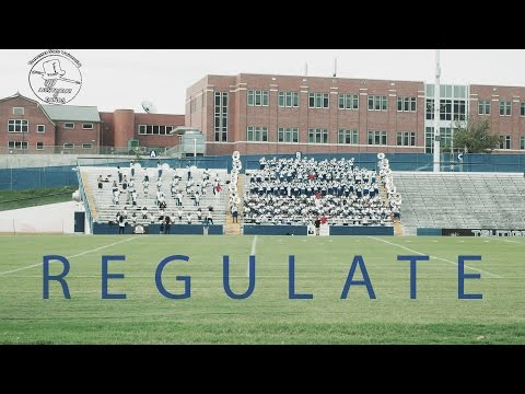REGULATE | Tennessee State University 2016