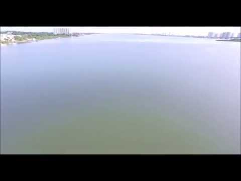 Dolphins in the Halifax RiverFlorida Drone Videos