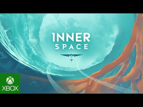 InnerSpace: Into the Inverse