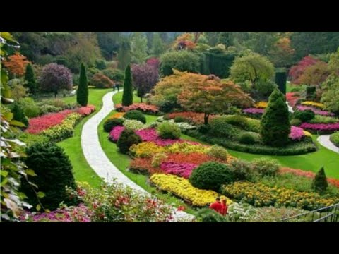 Most Beautiful Gardens In The World || Miracle Garden Dubai | #Gardens | Beautiful Gardens
