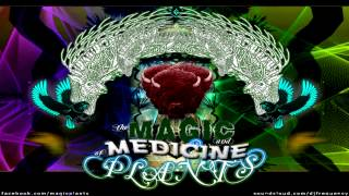 Magic Plants - High Roller [Hip-Hop Beat Instrumental]