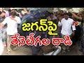 వైఎస్ జగన్ పై తేనెటీగల దాడి | Honey Bees Charges On YS Jagan | YS Jagan Padayatra Updates | NTV
