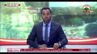 Oduu OBN - Ajjechaa Sanyii Qulqulleessuu Harargee Lixaa Raawatee Ilaalchise