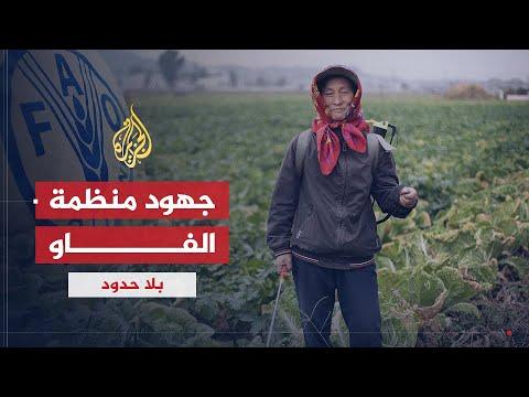هل الفاو قادرة على مجابهة انعدام الأمن الغذائي؟  - نشر قبل 6 ساعة