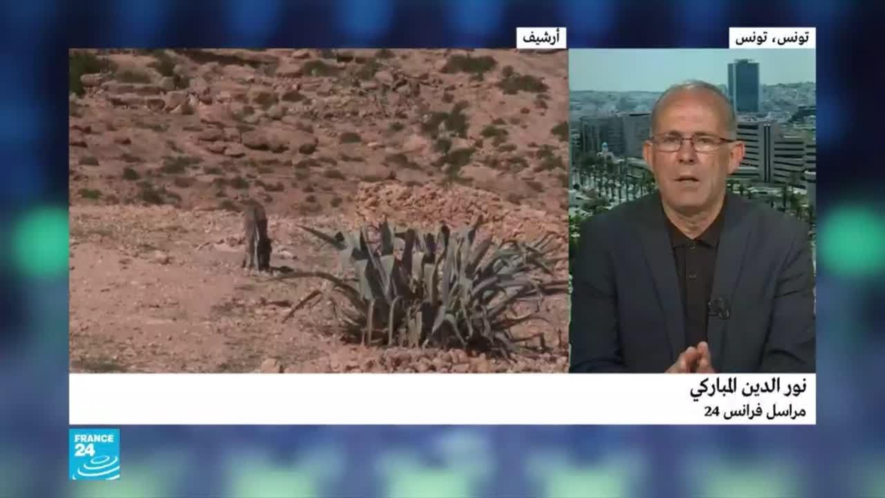 تونس.. مقتل -أمير كتيبة عقبة بن نافع- في عملية أمنية بجبال القصرين  - نشر قبل 5 ساعة