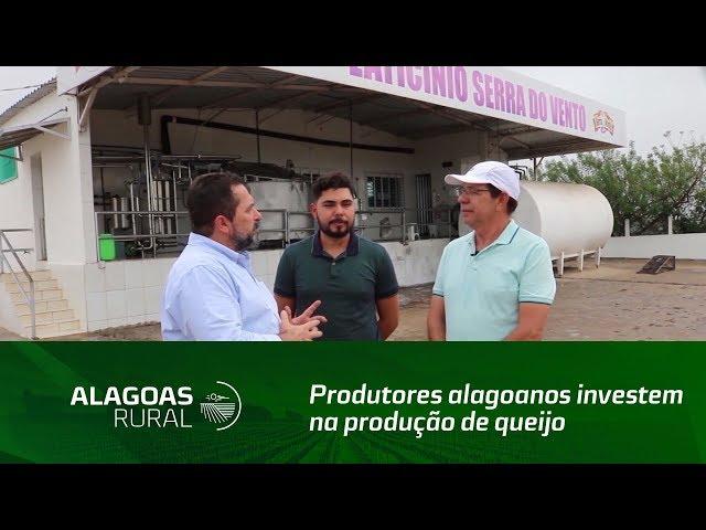 Acompanhe a história de dois empreendedores que investem na produção de Queijo