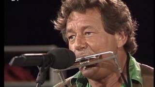 Wolfgang Ambros -  Langsam wochs´ ma  z´amm -  Live 1994