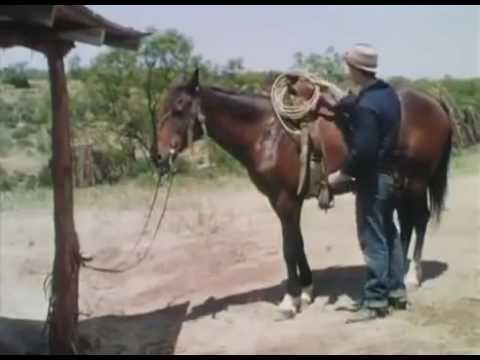 Kanion bezprawia - 1950 - [Western][Przygodowy] [Lektor]