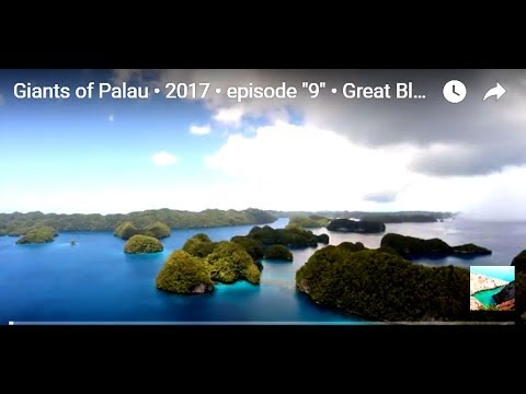 "Giants of Palau • 2017 • episode ""9"" • Great Blue Wild"