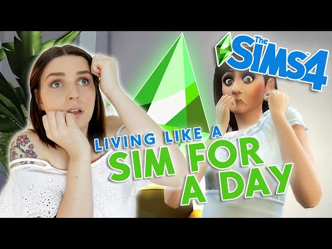 I Lived Like a Sim For a Day