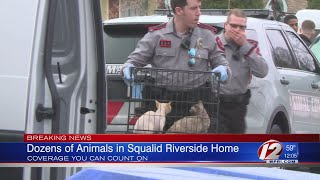 Police Remove Dozens of Animals from East Providence Home