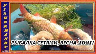Весна рыбалка сетями на реке Амур улов 2021г