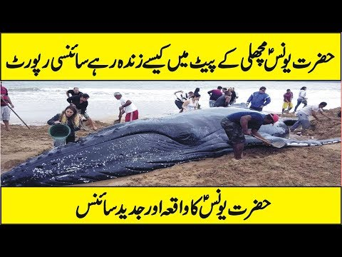 Scientific Research On The Story of Hazrat Younus A.S in Urdu Hindi
