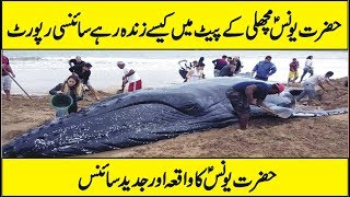 Scientific Research On The Story of Hazrat Younus A.S in Urdu Hindi thumbnail