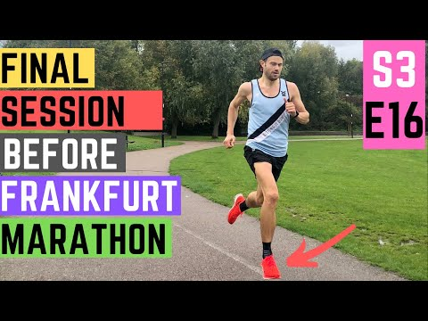 frankfurt-marathon-final-session-and-thoughts-plus-garmin-vip-event!