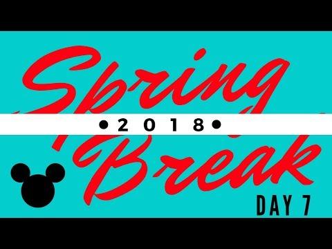 Disney World Vacation! Day 7: Hollywood and Vine - Vlog 15