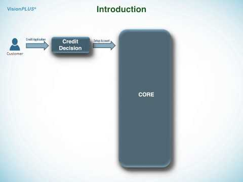 Credit Card Training - Credit Card Business & Vision Plus Introduction - Part 1