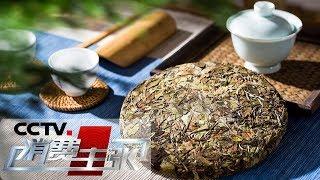 《消费主张》 20190521 福鼎白茶消费调查(下)| CCTV财经