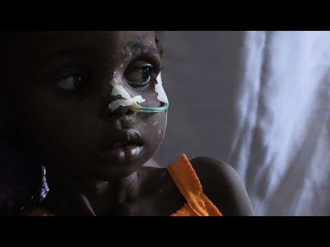 Starving to death: Boko Haram's food crisis in Nigeria