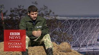 Стадион на поле боя: как ищут павших в Волгограде.