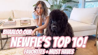 NEWFIE'S TOP 10 MUST HAVES! // THE TOASTY LIFE