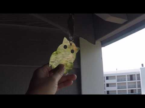 🔇 HOW TO KEEP BIRDS AWAY ✪ LOUD BIRD REPELLENT | BIRD SOUNDS | PEST CONTROL | BIRD CALLS = Music