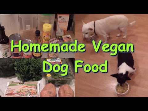 Homemade Dog food Recipe - Vegan/Plant-based