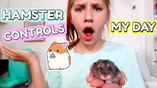 Hamster Controls My Life!
