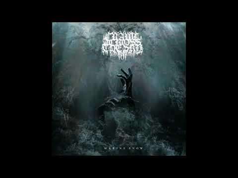 Crawl Across the Sky - Marine Snow (EP: 2020)