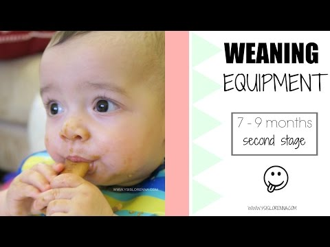 Weaning Equipment: 7-9 Months (Second Stage) | Ysis Lorenna Ad