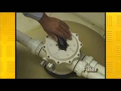 tagelus 230 sand filter manual