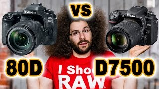 CANON 80D vs Nikon D7500: Which to buy