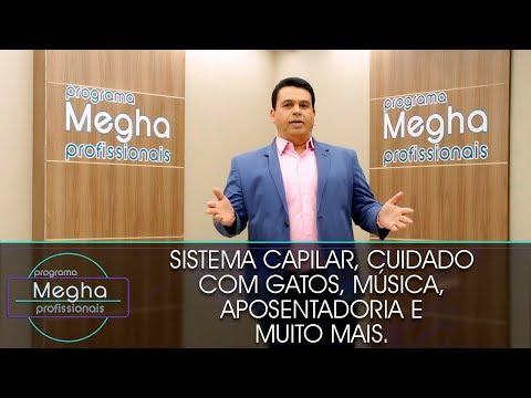 Programa Megha Profissionais n° 656