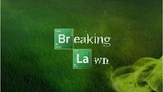 Breaking Lawn