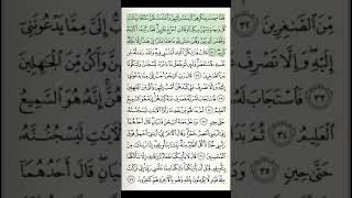 12-juz 18-sahifa Qur'on tilovati sahifa-sahifa