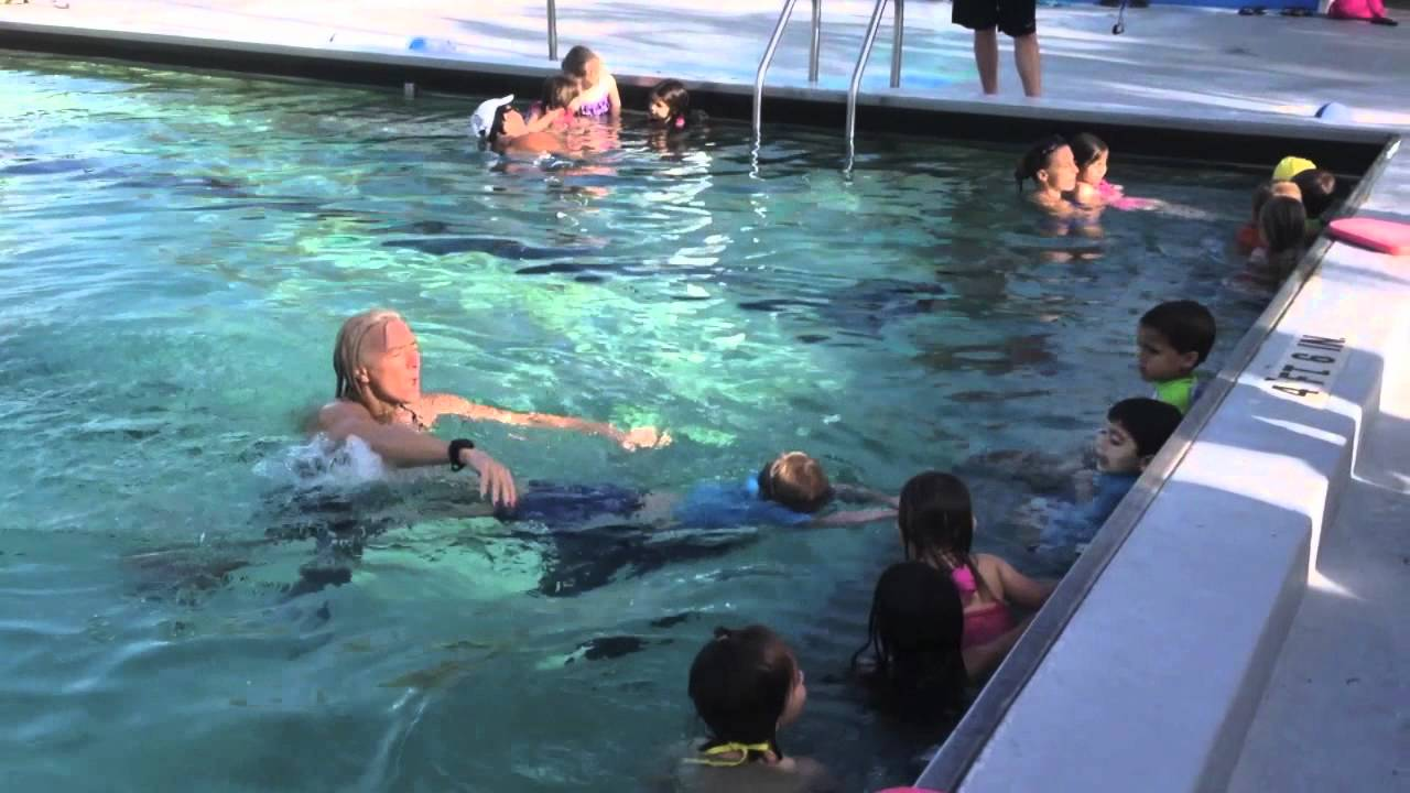 b4eabadd438 Collier County SWIM Central - Safe   Healthy Children s Coalition of ...