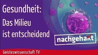 Geisteswissenschaft TV - Gesundheit: Das Milieu ist entscheidend