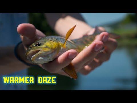 Warmer Daze - Fly Fishing Tennessee