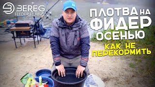 Ловля плотвы на Обводном канале Как не перекормить рыбу Рыбалка на фидер поздней осенью