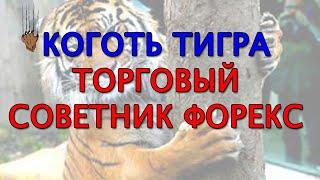 Коготь тигра обзор торгового советника Форекс(, 2015-05-14T20:18:10.000Z)