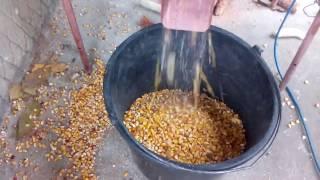 обзор теребилка кукурузы