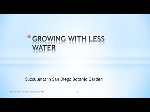 Succulents - Growing with Less Water