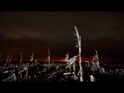 Sean Deason  - Awakening