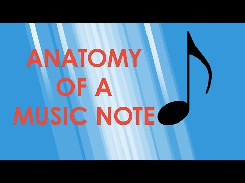 Anatomy of a Music Note - Music Theory Crash Course