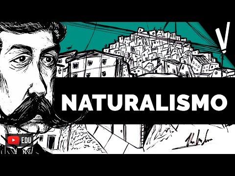 Naturalismo | reVisão + Tatiany Leite (Vá Ler um Livro)