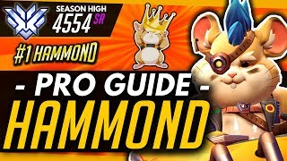 Overwatch | HAMMOND PRO Guide - Tips For Learning / Playing Wrecking Ball (ft Yeatle)