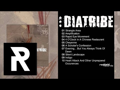 08 DIATRIBE - Silent Landscape