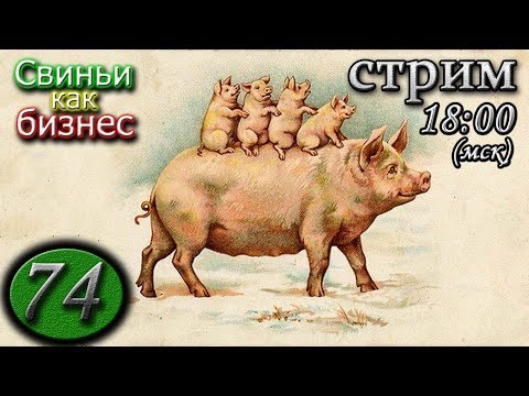 24.01.20 🔴 Консилиум свиноводов