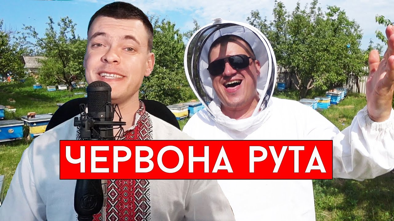 Червона рута (cover Виталий Лобач & А Баскевич)