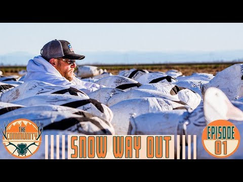 EPIC WATERFOWLING IN CALIFORNIA | Snow Goose Hunting W/ Scott Feist